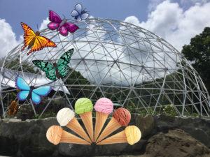 Ice Cream & Butterflies